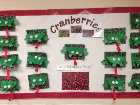 Cranberries Project