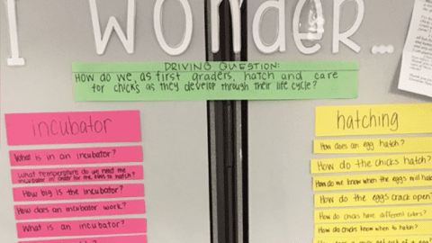 Creating a Culture of Questioning: Inquiry in Lower Elementary